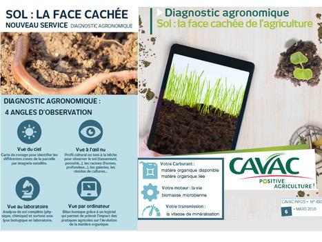 Le sol : la face cachée de l'agriculture, 5 bonnes raisons de faire un diagnostic agronomique | MOF Matière Organique Fugace réactive du sol | Scoop.it