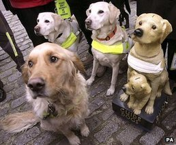 Guide dog owners 'denied access' | Great Pyrenees & Canine Rescue | Scoop.it