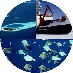 Oceanografía Geológica - Alianza Superior | Oceanografía Geológica | Scoop.it