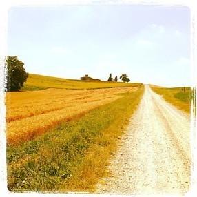 Terra dei vini e dei sapori   Viaggi e Vacanze   Scoop.it
