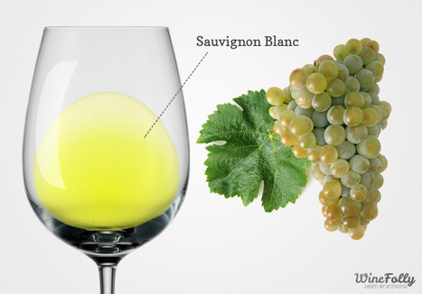 About Sauvignon Blanc Wine - Taste, Regions and Food Pairing | Wine Folly | Planet Bordeaux - The Heart & Soul of Bordeaux | Scoop.it