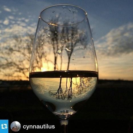 Via Instagram: Repost von @cynnautilus<br/><br/>Endlich Wochenende: Viva | UnserBodensee | Scoop.it