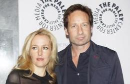 Gillian Anderson wants X-Files 3 - Movie Balla | News Daily About Movie Balla | Scoop.it