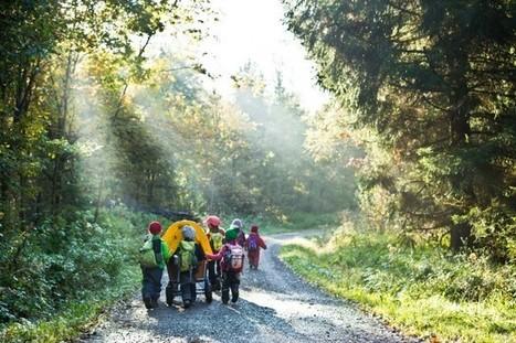 Faire garder ses enfants en forêt | MARIE ALLARD | Famille | Entreprendre autrement | Scoop.it