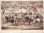 Afghan cameleers in Australia | australia.gov.au | Year 5 History: The Afghan Cameleers | Scoop.it