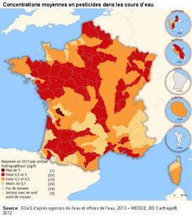 Pesticides : le rapport caché - Actu-environnement.com   Abeilles, intoxications et informations   Scoop.it