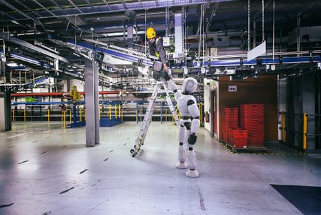 Ocado désire une armée de robots humanoïdes | Une nouvelle civilisation de Robots | Scoop.it