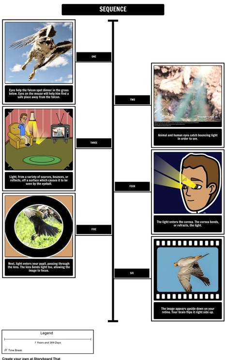 Seeing Eye to Eye by Leslie Hall | Lesson Plan & Activities | Storyboard That | Scoop.it