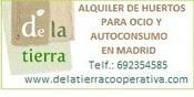 Cómo hacer un jabón casero lavavajillas   ECOagricultor   Actualidad Agrícola   Scoop.it