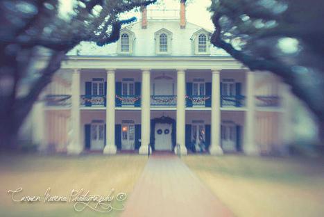Oak Alley by Carmen Moreno | Oak Alley Plantation: Things to see! | Scoop.it