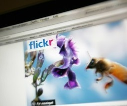 Flickr Adds Hashtag Support To Its iOS App | iPhones and iThings | Scoop.it
