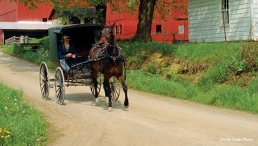 Ohio's Amish Country in Holmes County OH | Amish Tours, shopping, lodging, dining, visitors, berlin | American Denomination | Scoop.it