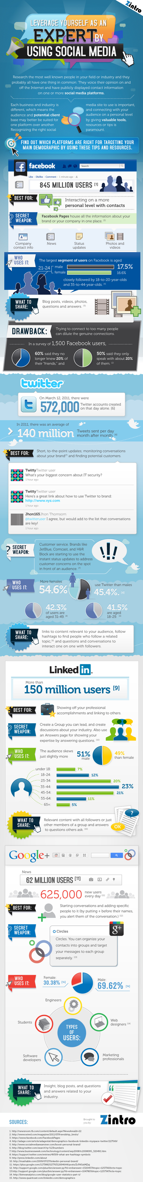 Leverage Yourself as an Expert by using Social Media [Infographic] | Share Some Love Today | Scoop.it