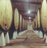 LA FERMENTACION DEL VINO - ENOLOGIA | fermentacion del vino | Scoop.it