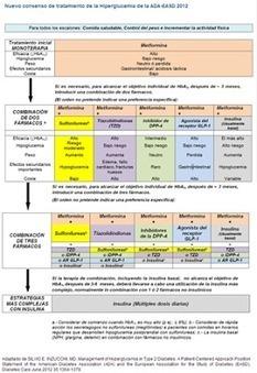 Diabetes Mellitus tipo II | Diabetesmellitustipo2 | Scoop.it