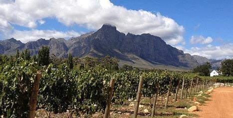 Viticulture au Chili : une terre viticole historique en pleine évolution | Images et infos du monde viticole | Scoop.it