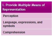 Provide Multiple Means of Representation | Specialized Instruction | Scoop.it