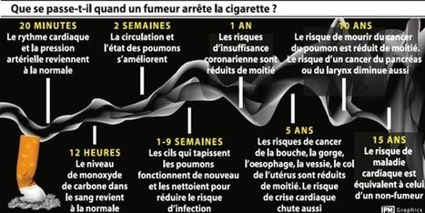 Que se passe-t-il quand un fumeur arrête la cigarette? (Infographie)   #ESanté by Umanlife   Scoop.it
