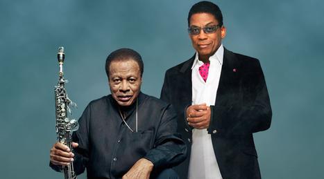 Carlos Santana forme un groupe avec Herbie Hancock, Marcus Miller, Wayne Shorter & Cindy Blackman - Clique.tv | Paper Rock | Scoop.it