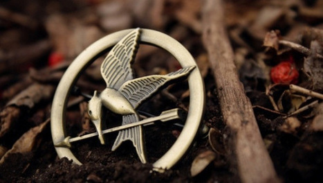 Want to be part of the Mockingjay movie crew? | My Hunger Games | The Hunger Games : Catching Fire | Scoop.it