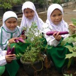 Organic Gardening Added to School Health & Nutrtion Program ... | edible landscaping | Scoop.it