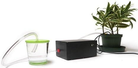 Kit Arduino te ayuda con las plantas | InternetdelasCosas | Scoop.it