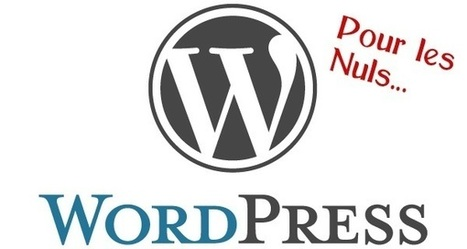 ➨ WordPress pour les Nuls - Comment bien débuter ? | WordPress France | Scoop.it