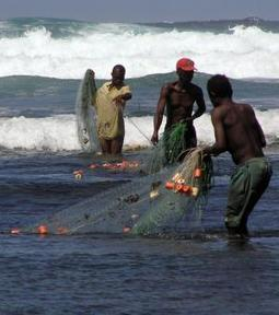 A sea change for marine conservation | Sustain Our Earth | Scoop.it
