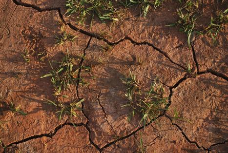 Si l'on exploitait toutes les #réserves #fossiles, la #température pourrait augmenter de 10° | RSE et Développement Durable | Scoop.it