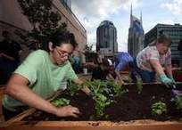 Downtown church's rooftop garden nourishes bodies, minds - The Tennessean | Nashville TN - God's Country | Scoop.it