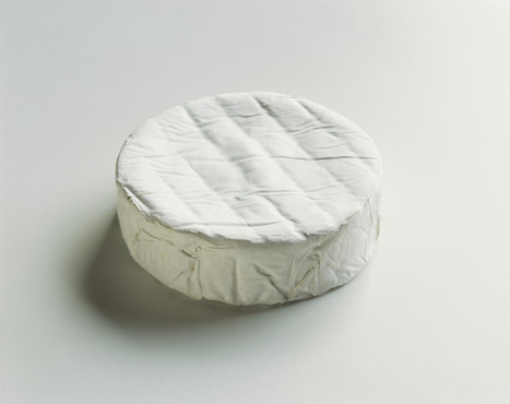 Microbiologists Hold the Secrets to Making Perfect Cheese | Mr. Isaacs Biology | Scoop.it