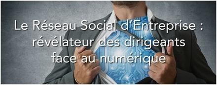 Le Réseau Social d'Entreprise : révélateur des dirigeants face au numérique | RSE et CNR | Scoop.it