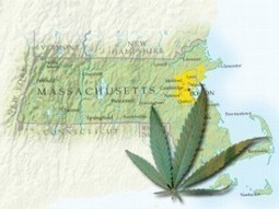 Massachusetts: Two-Thirds Favor Marijuana Legalization In Survey   Hemp News   marijuanas   Scoop.it