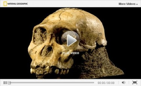 "Top 10 ""Nat Geo Talks"" of 2012 