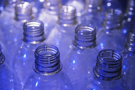 Bisphenol A is Affecting Us at Much Lower Doses | Food Safety and Quality | Scoop.it