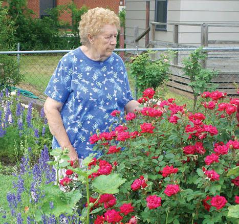 Garden colors to lift the spirits - Pauls Valley Daily Democrat   jardins verticals   Scoop.it