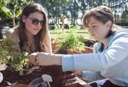 Urban Agriculture class lets students do hands-on gardening ... | Wellington Aquaponics | Scoop.it
