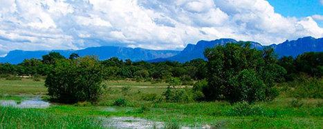 Viaggi in Sudafrica, Kruger to Canyon | ViaggiSudAfrica | Scoop.it