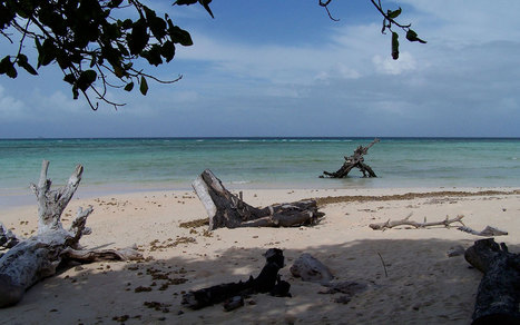 Pacific islands hope to convince world to move on climate change | Al Jazeera America | Sustain Our Earth | Scoop.it