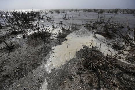 3 Years Of Gulf Oil Spill Photos Show Ongoing Impact | BP Economic Recovery | Scoop.it
