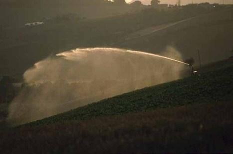 Progettare e realizzare l'impianto di irrigazione   Come fare l'orto in balcone o terrazzo, consigli e idee   Scoop.it