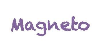 Magneto, notre projet Cleantech sélectionné pour le prix IDDEA 2013! | L'expérience consommateurs dans l'efficience énergétique | Scoop.it