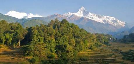 Risky business: assessing potential impacts of REDD+ in Nepal | Anthropology and Climate Change | Scoop.it