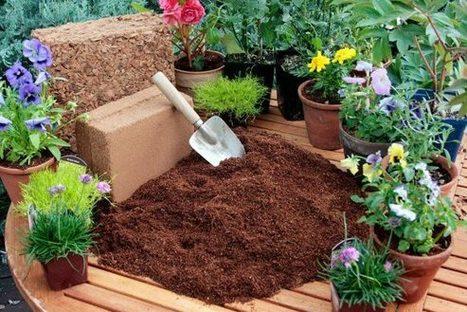What is The Best Potting Soil? | Gardening | Scoop.it