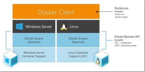 New Windows Server containers and Azure support for Docker | Microsoft Azure Blog | Martin's selection | Scoop.it