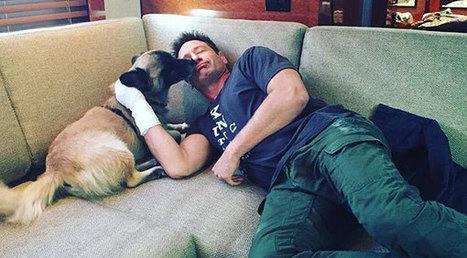 "David Duchovny's ""Lick My Face"" Challenge to Aid Zero-Kill Effort | Modern dog training methods and dog behavior | Scoop.it"