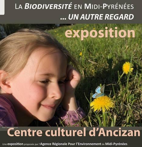 Exposition : la biodiversité en Midi-Pyrénées, à Ancizan | Vallée d'Aure - Pyrénées | Scoop.it