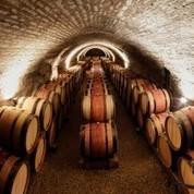 Vinizos, (re)découvrons le vin ! - Trouvez Réservez Dégustez   Oenotourisme   Scoop.it