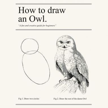 Seth's Blog: How to draw an owl | Liberating Genius | Scoop.it