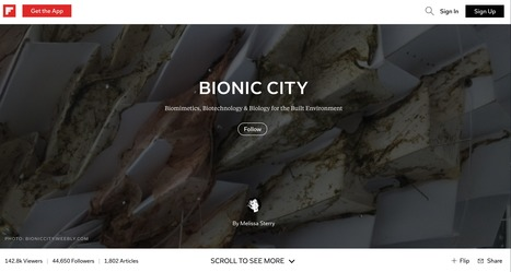 Bionic City magazine, Nov 2016 | Bionic City™ | Scoop.it